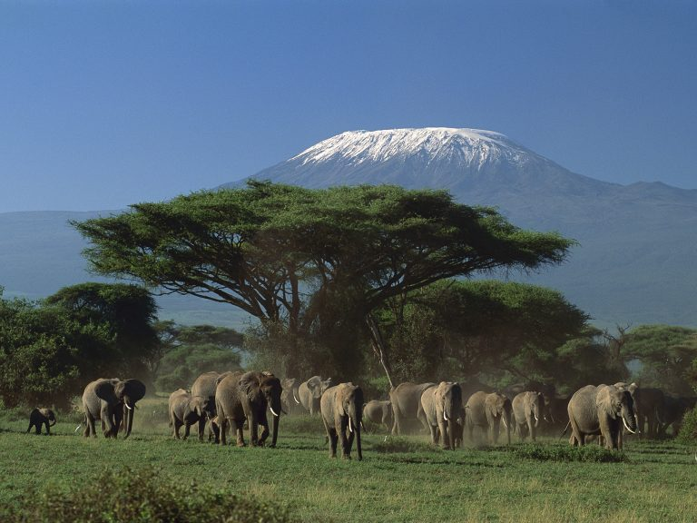 Arusha-National-Park-Kesari-Tours