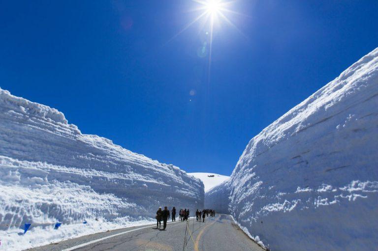 Yukino-ōtani-Snow-Walls-Kesari-Tours