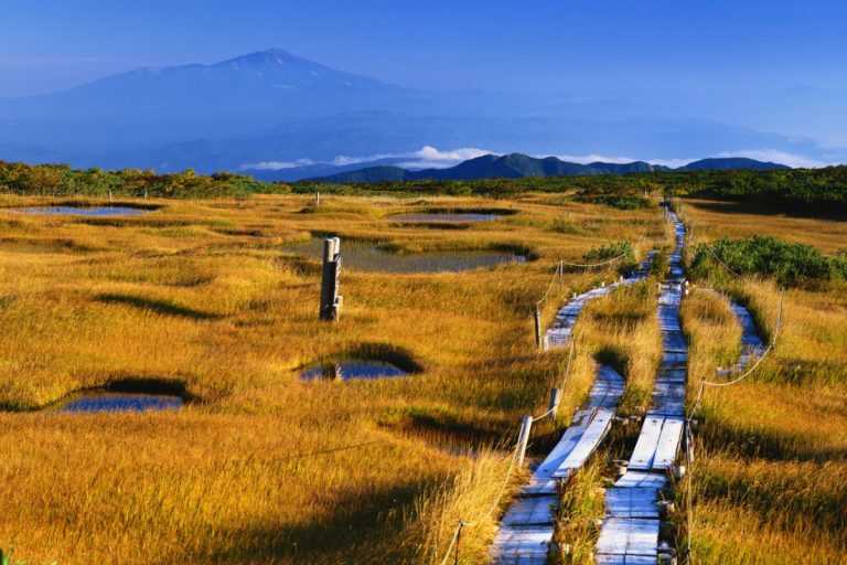 Midagahara-Kesari-Tours