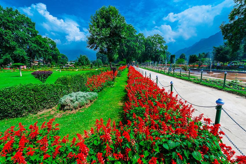 Shalimar Bagh | kashmir summer packages Kesari tours