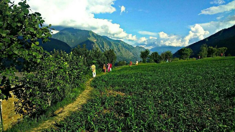 Kullu-Valley-Kesari-Tours