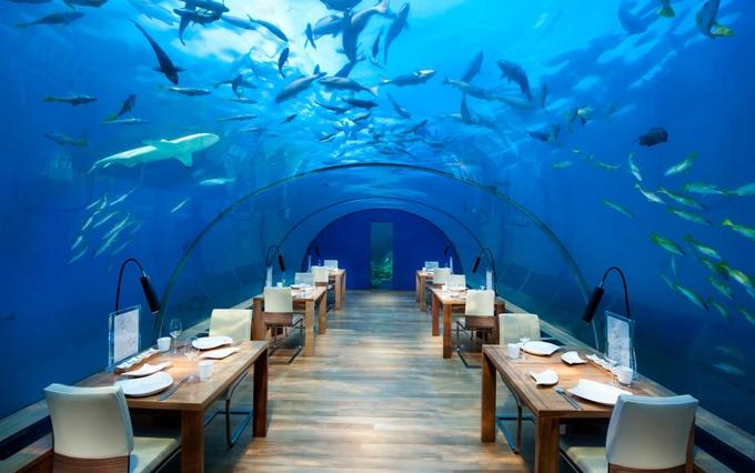 conrad-maldives-kesari-tours