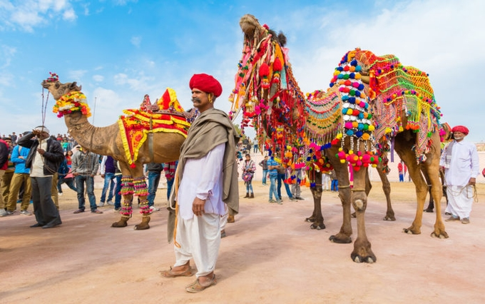camel-decoration-kesari-tours