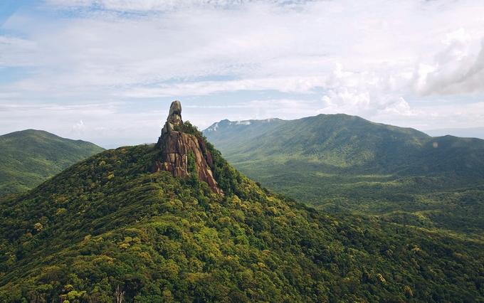 daintree rainforest - kesari tours to visit famous places in Australia