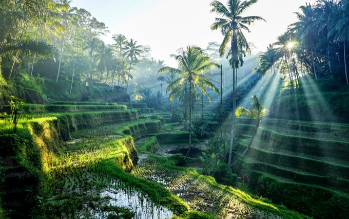 Instagrammable places Indonesia