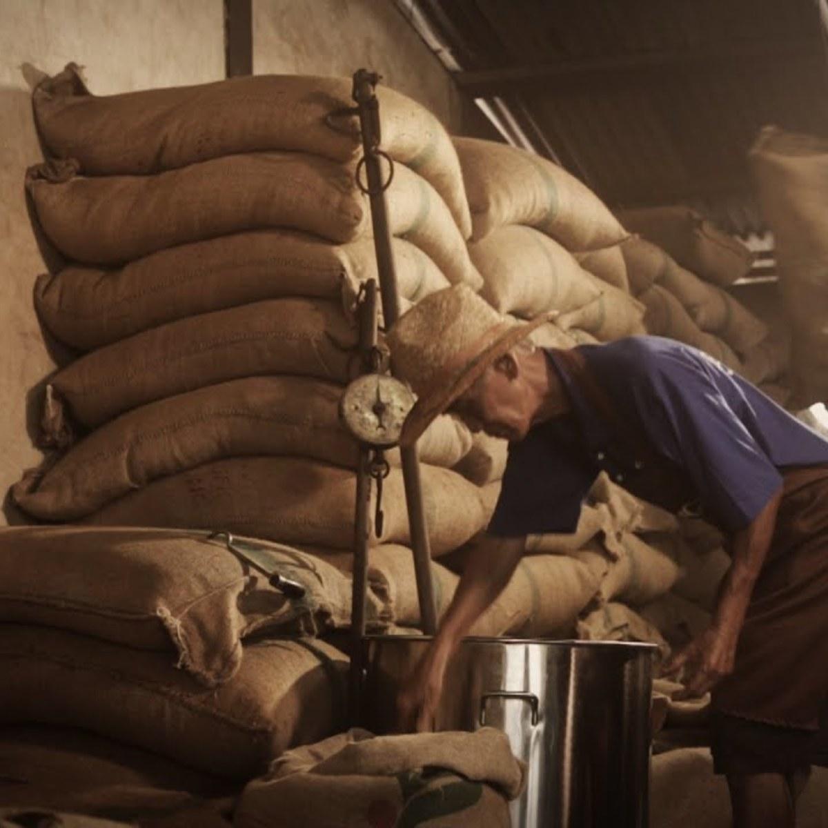 Aun tong coffee kikia