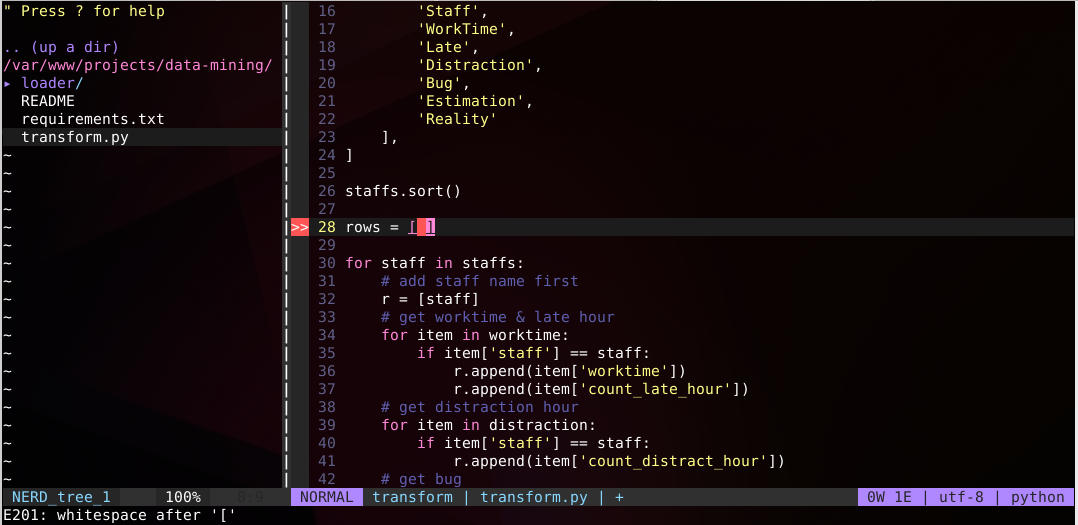 VIM - Python linting with ALE