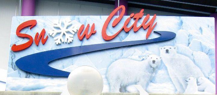 Snow City [Open Ticket]