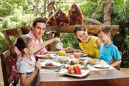 「singapore zoo jungle breakfast」の画像検索結果