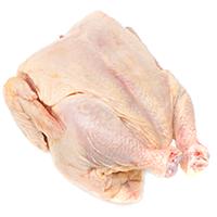 Ayam Daging Ikan