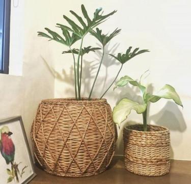 Crisscross Planter (Medium)