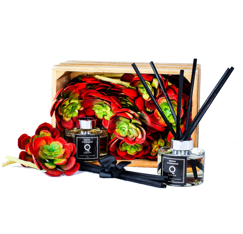 Premium Reed Diffuser 165ml