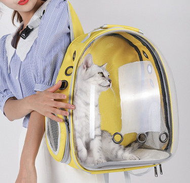 Capsule Small Pet Carrier