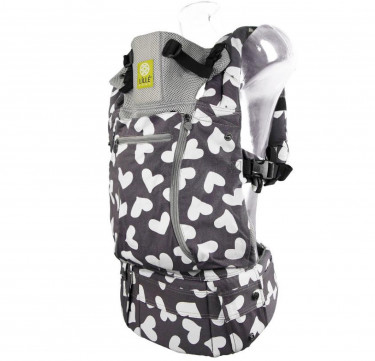 Complete All Seasons 6-in-1 Baby Carrier (I Heart You)