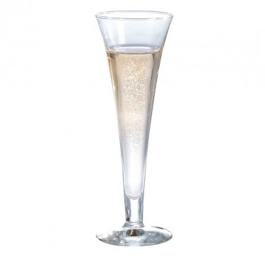 Royal Champagne Glass Set of 6