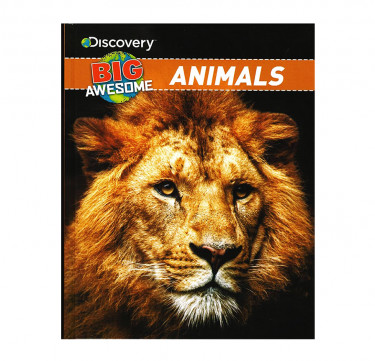 "Discovery Big Awesome ""Animals"""