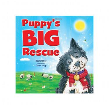 "Picture Flats ""Puppy's Big Rescue"""
