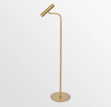 Cygnus Brass Modern Floor Lamp
