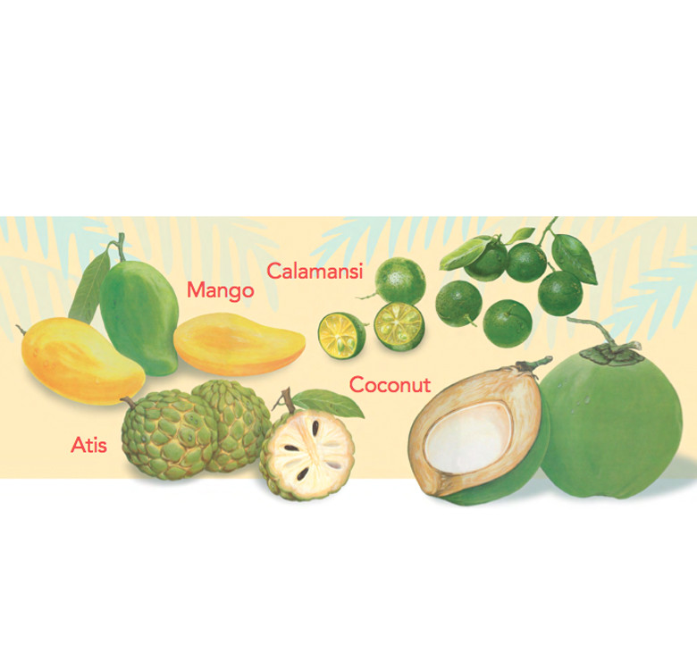 A First Look At Philippine Fruits, Flowers, Trees (Board Book)