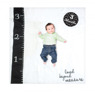 Loved Beyond Measure Milestone Blanket & Card Set