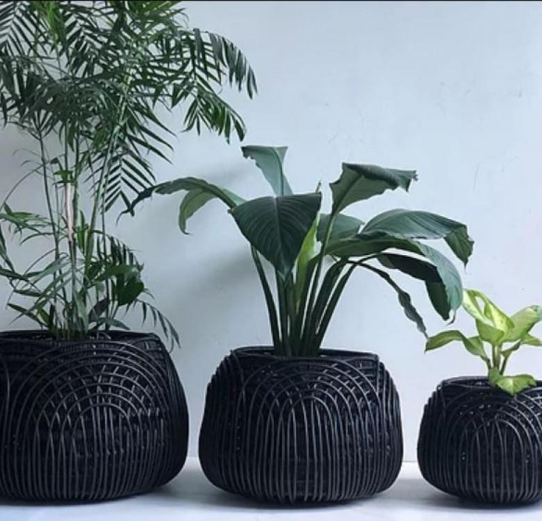 Alon Statement Piece Extra Large Black Planter