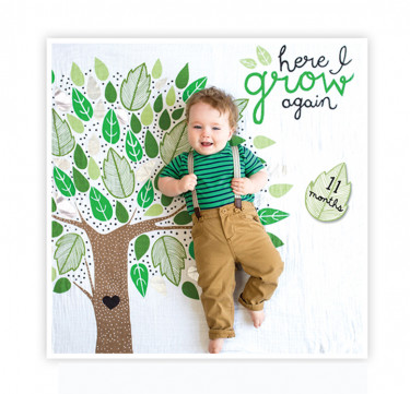 Here I Grow Again Milestone Blanket & Card Set