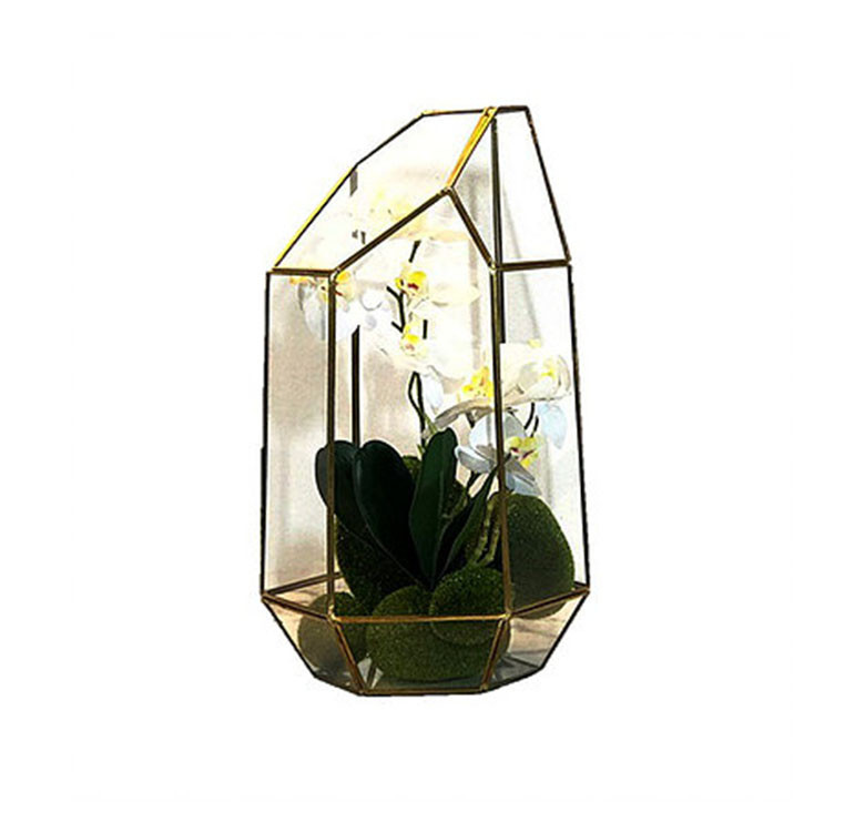Glass Terrarium with Orchids