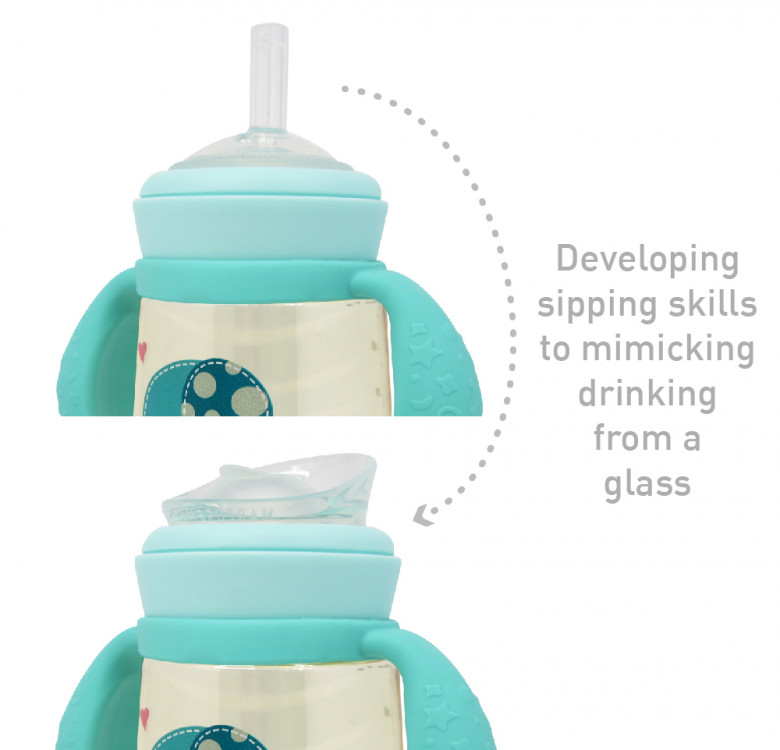 PPSU Transition Trainer Bottle Set