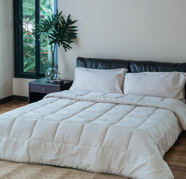 Feather Stone Comforter