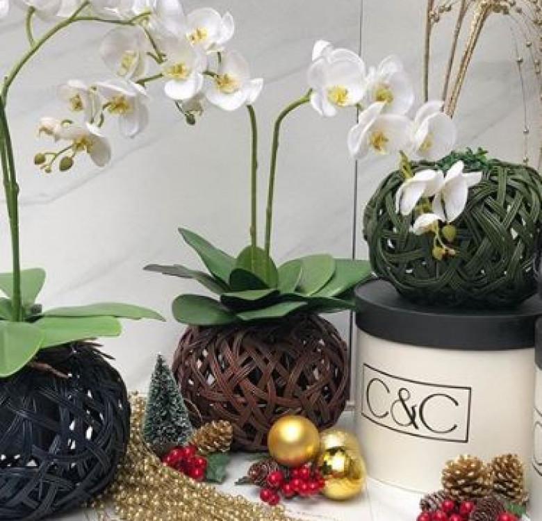 Tinali Orchid Pot