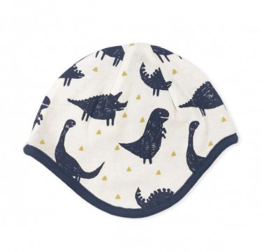 Finn + Emma Dinos Collection Reversible Cap