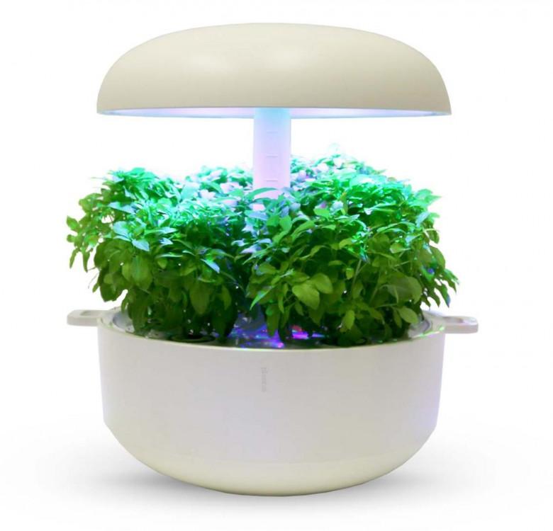 Basil Minette Plantui Plant Capsules™