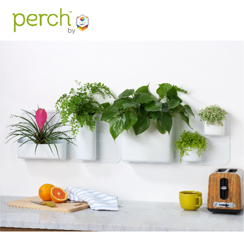 Perch 3-Piece Magnetic Wall Storage System