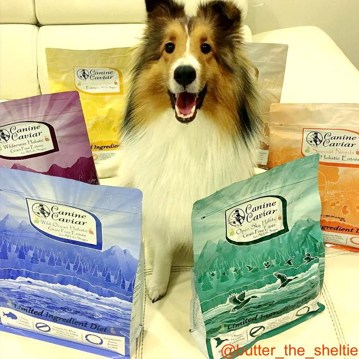 Canine Caviar - The First & Only Alkaline Dog Food