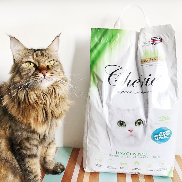 Switching To Chérie Cat Litter