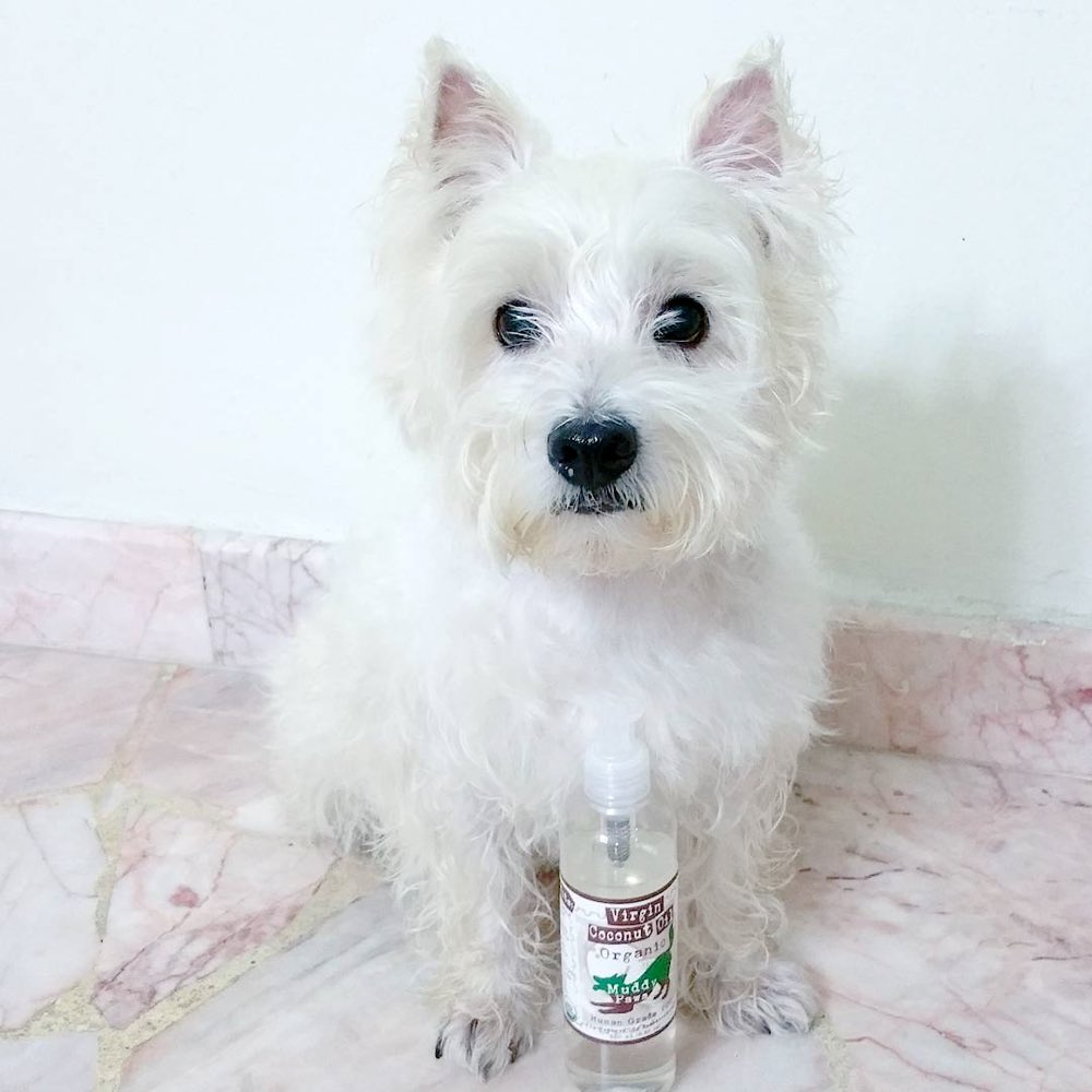 Muddy Paws Organic Cold Pressed Virgin Coconut Oil