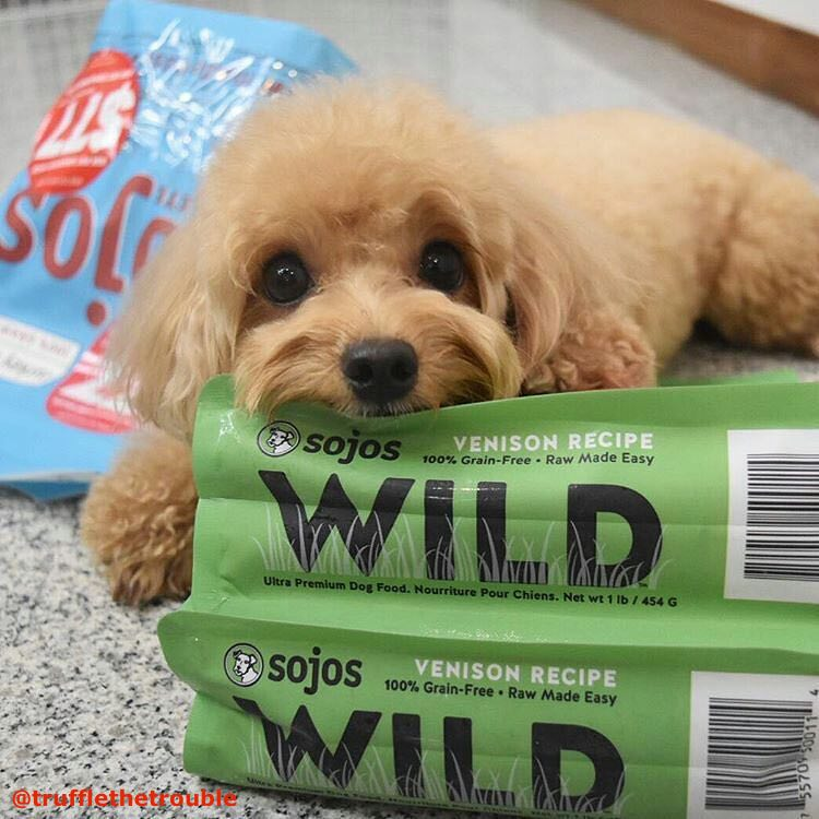 Sojos Complete & Wild Dog Food
