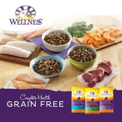 Wellness Complete Health Grain-Free Recipe Dog Food