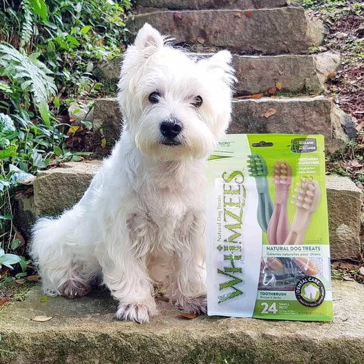 Whimzees Natural Dog Chews