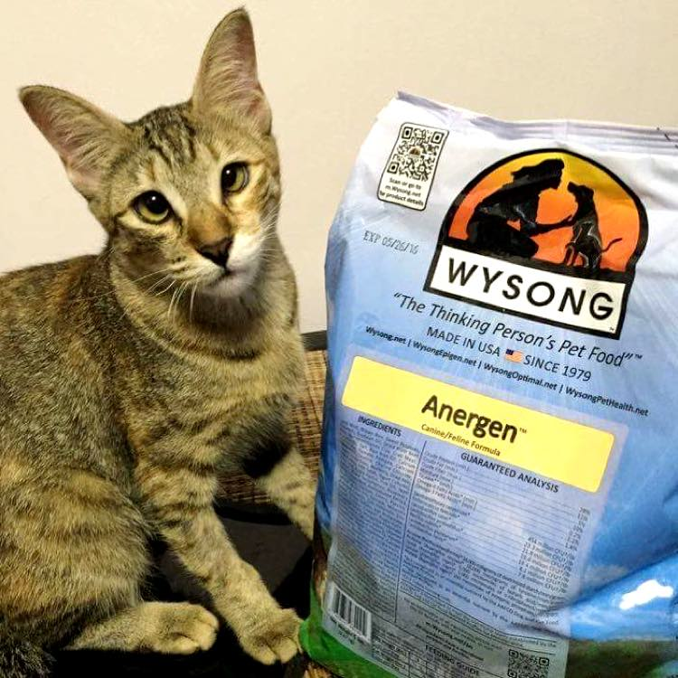 Wysong's Non-Grain Free Pet Food