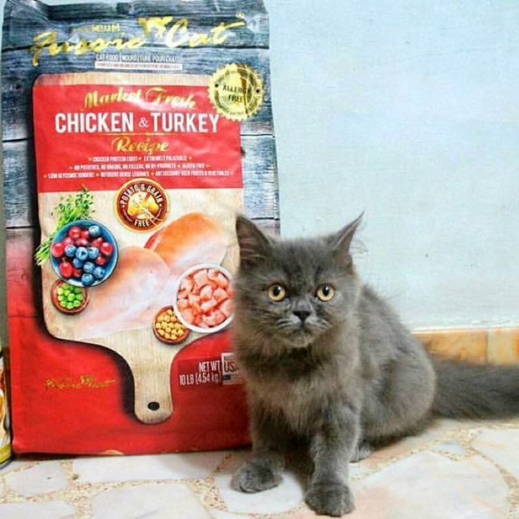 Fussie Cat Market Fresh Dry Cat Food