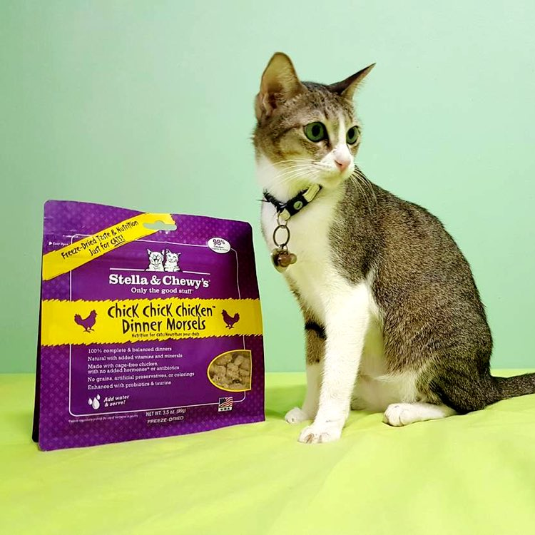 Dinner Morsels, The Wild Diet Your Cats Crave!