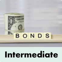 BOND ETFS - INTERMEDIATE TERM