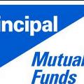 Principal Hybrid Equity Fund