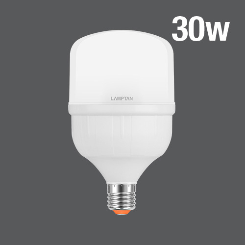 Led high watt t bulb gloss 30w web 02