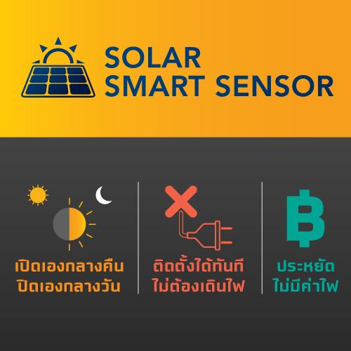 Solar pole light ss deluxe 10w web04