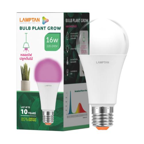 Bulb plant grow web 16w pk