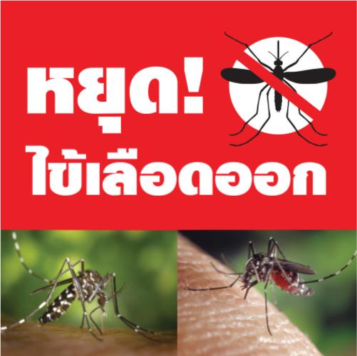 Compact anti mosquito web 5