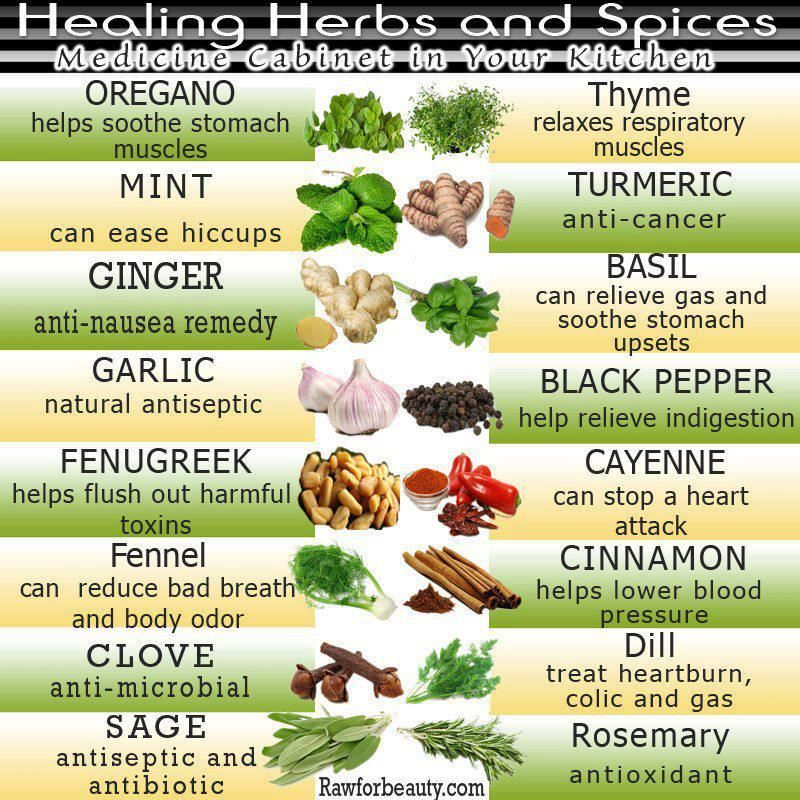 Healing_Herbs_and_Spices___20130407103124___.jpg