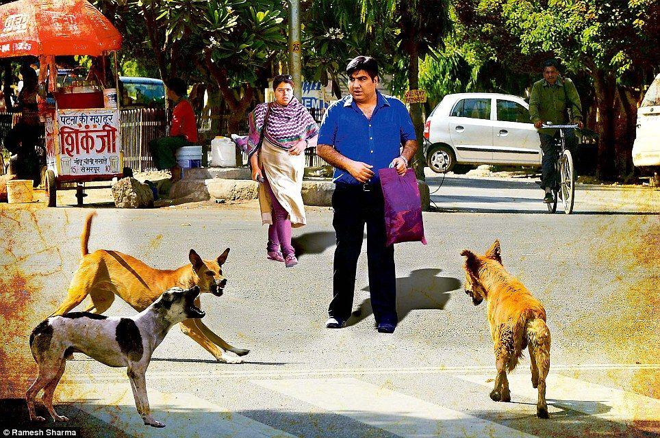 Pedestrians_are_Nervous___20140612121338___.jpg